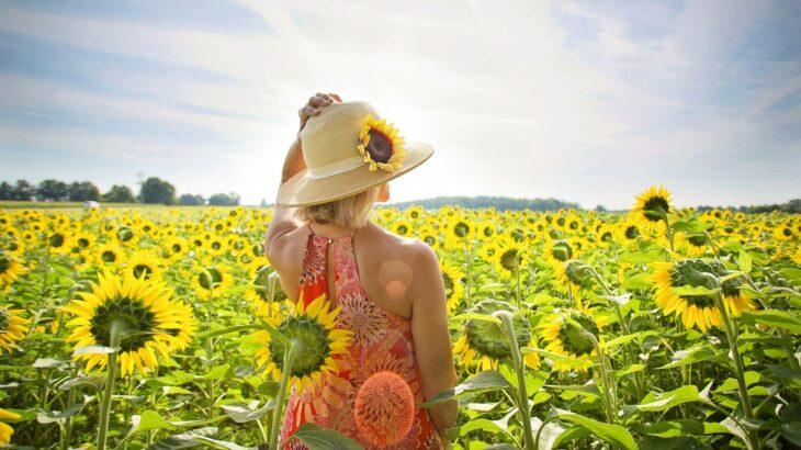 夏本番!!スマートフォンが発熱する原因と対策|池端隆司のモバイルジャンクション