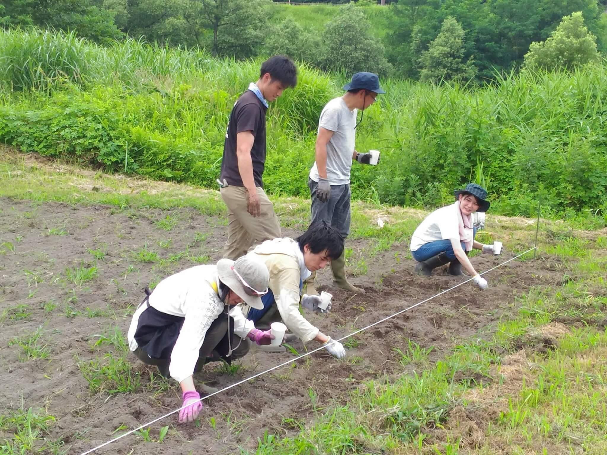 NPO法人しごとのみらい 農業体験活動の様子